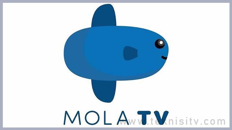 Kelebihan dan Kekurangan Live Streaming Mola TV