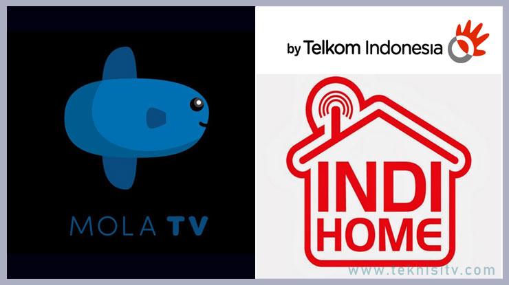 Mengatasi Mola TV Error di IndiHome