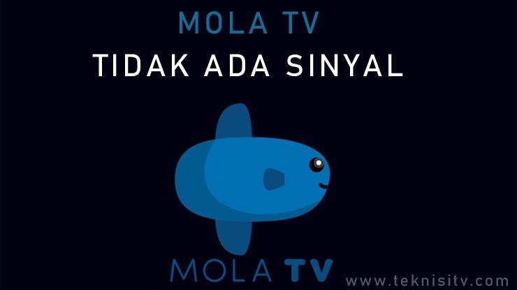 Mola TV Tidak Ada Sinyal.